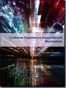 Customer Experience Improvement Momentum ebook
